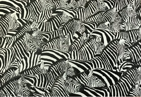 An Inordinate Fondest for Stripes