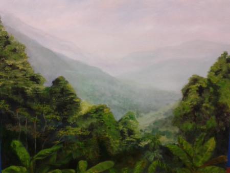 Desde la selva