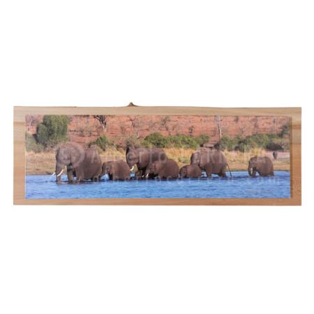 Fine Art Elefante Africano sobre madera de Plátano de Sombra