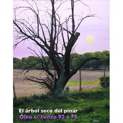 Árbol seco en el Pinar