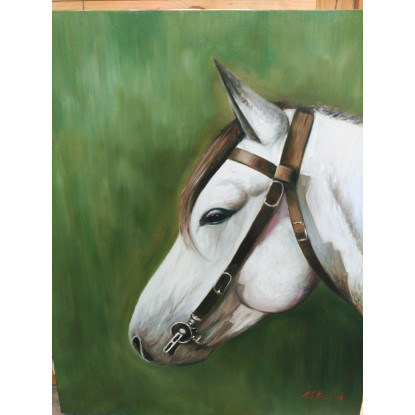 cabeza caballo